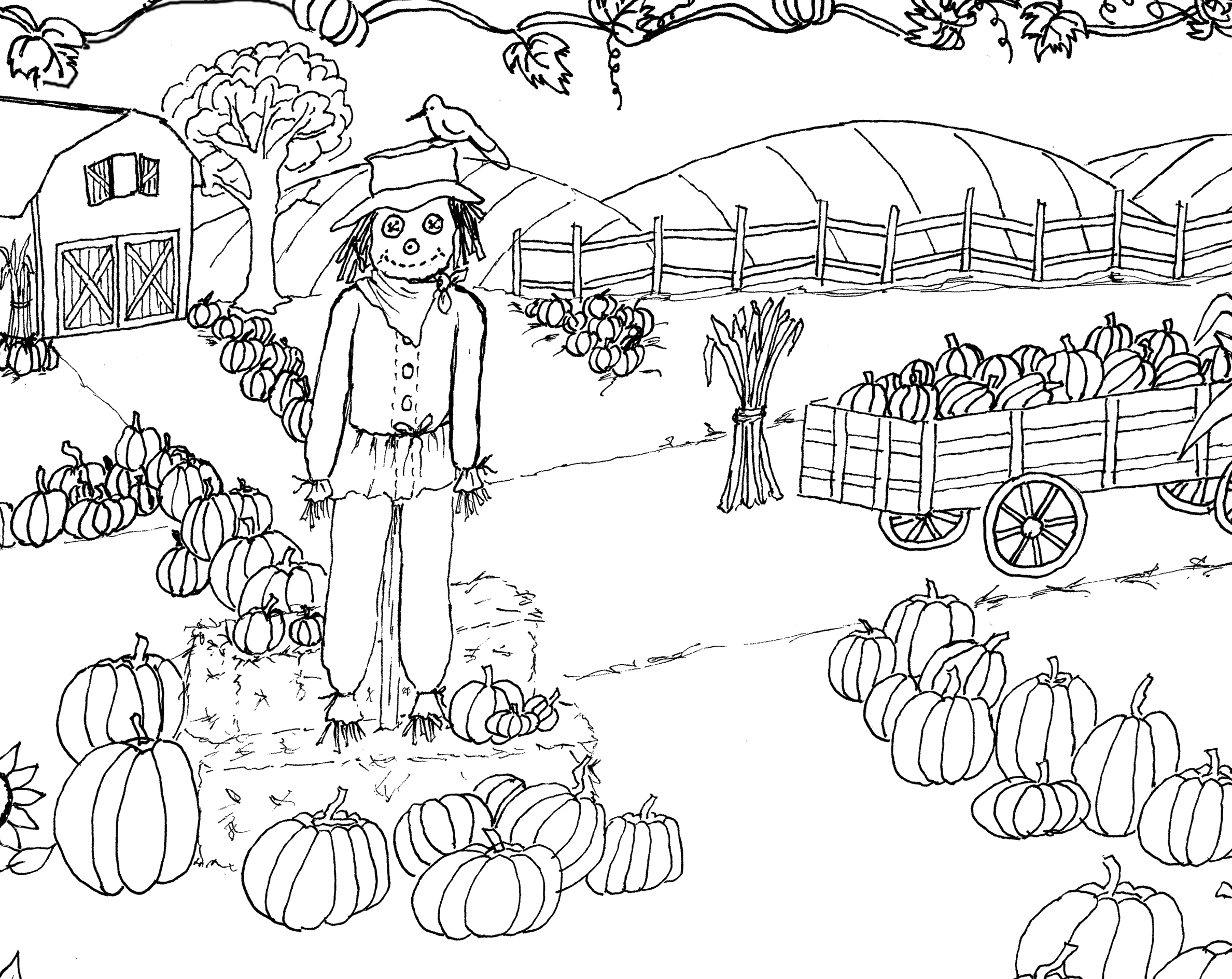 27+ Best Photo of Pumpkin Patch Coloring Pages