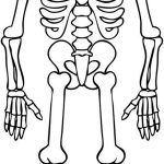 Skeleton Coloring Pages 28 Halloween Skeleton Coloring Pages Download Coloring Sheets