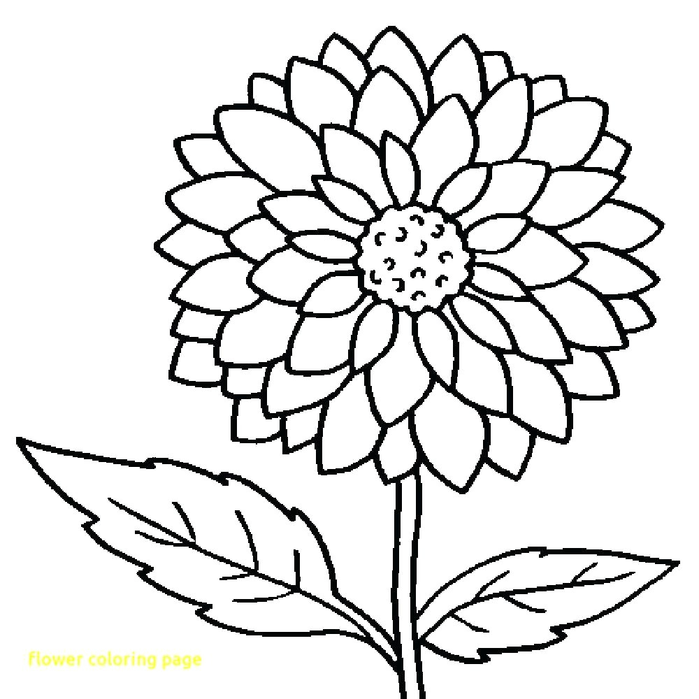 Spring Flowers Coloring Pages Cooloring Book Excelent Spring Flower Coloring Pages Free