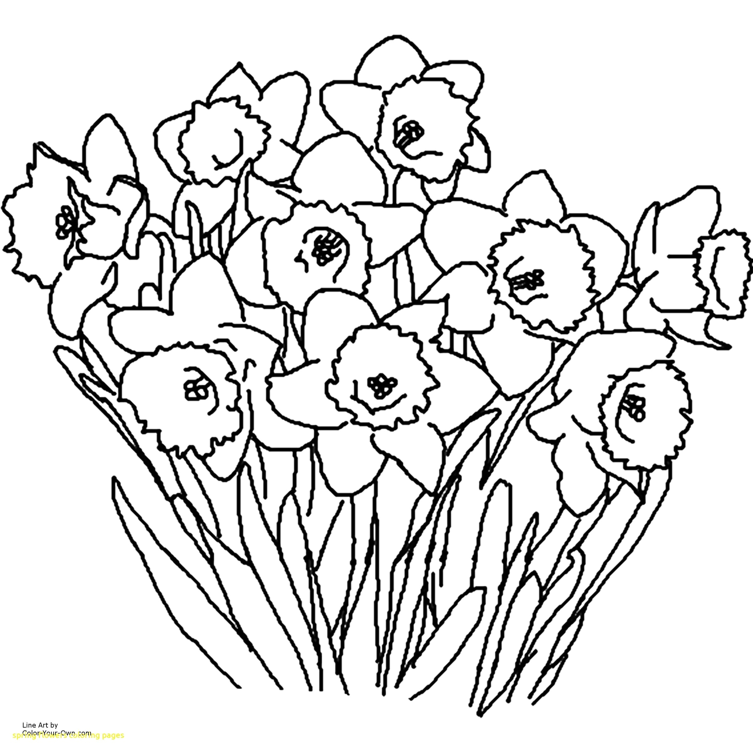 Spring Flowers Coloring Pages Delivered Flowers Coloring Pages Spring Flower Coloringsuite Com