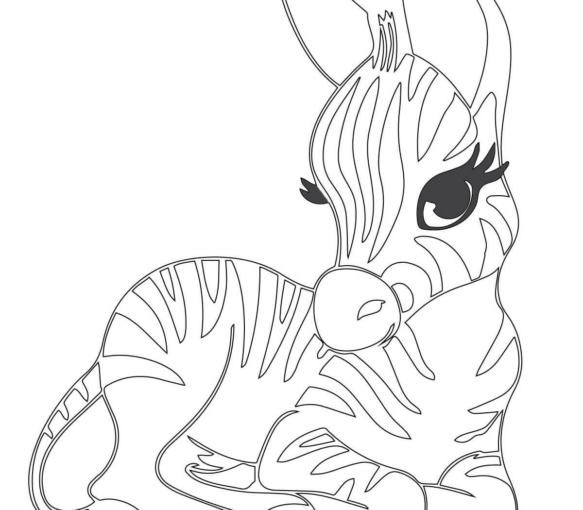 Zebra Coloring Pages Printable Zebra Pictures Images Free Coloring Awful Pages Disney For