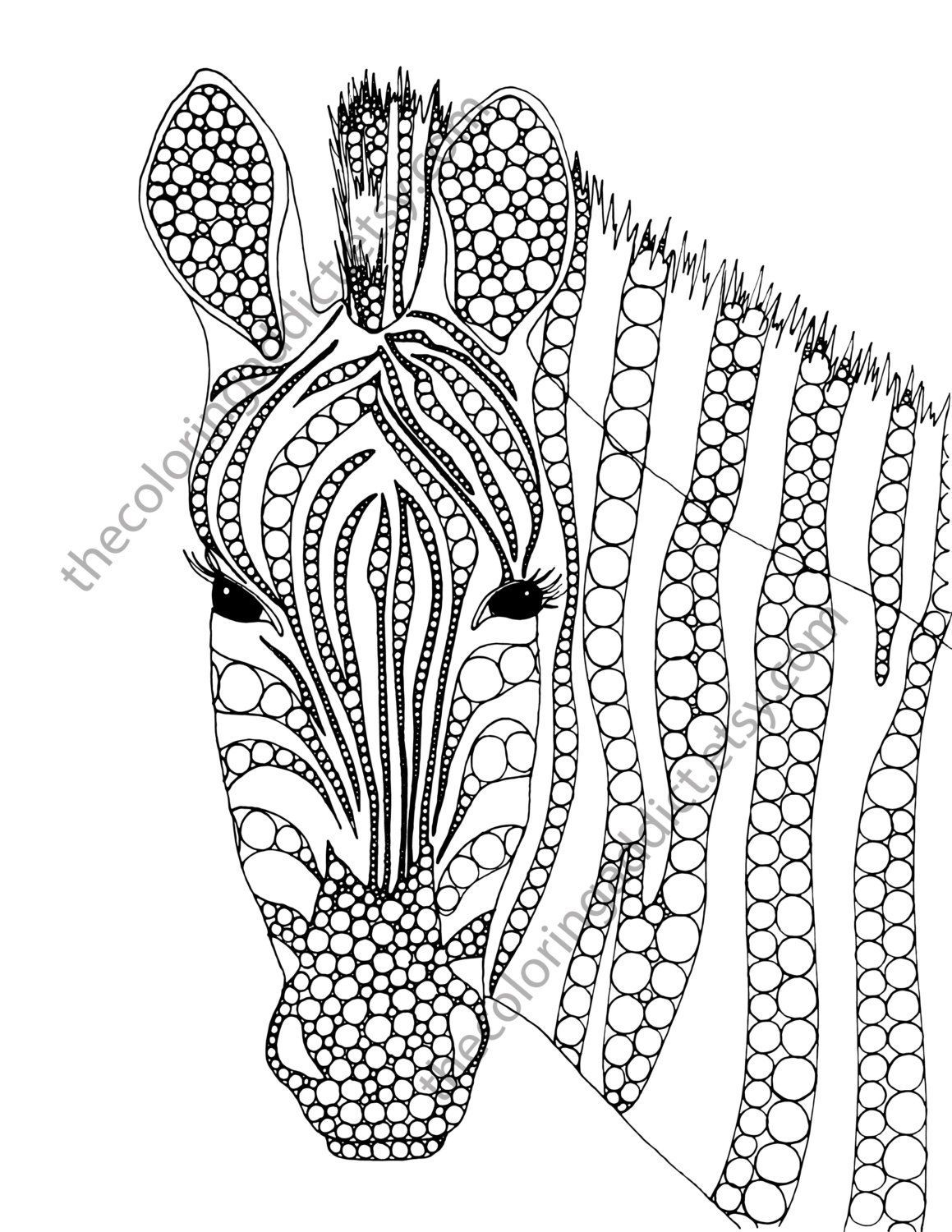Zebra Coloring Pages Zebra Coloring Page Animal Coloring Page Adult Coloring Page